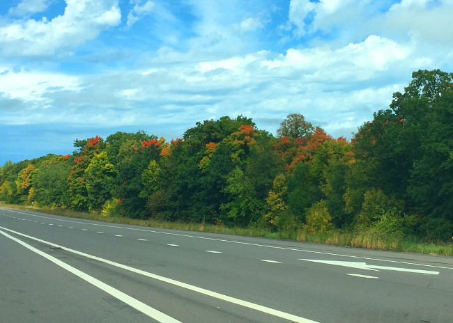 The leaves were just beginning to change in western Minnesota along I-94.